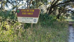 Little Big Econ State Forest